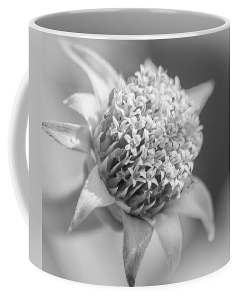 Weed Coffee Mug featuring the photograph Blooming Weed by Carolyn Marshall