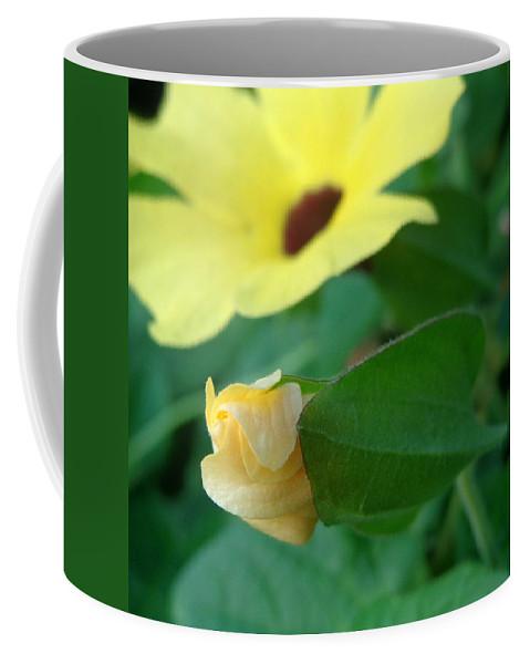 Joseph Skompski Coffee Mug featuring the photograph Blossom by Joseph Skompski