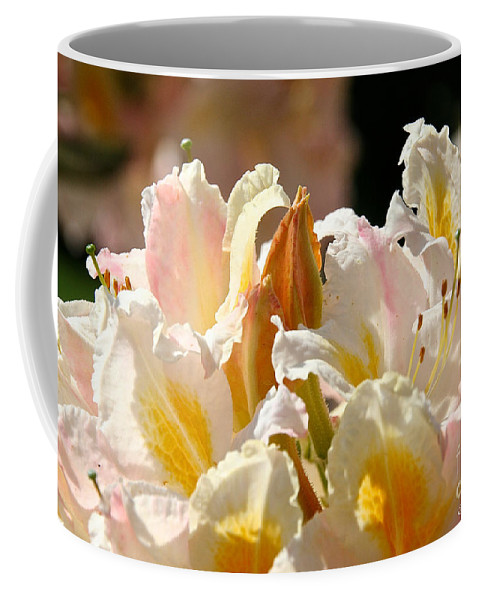 Flower Coffee Mug featuring the photograph Blossom Top by Susan Herber