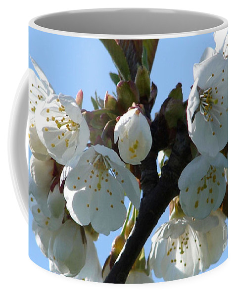 Blossoms Coffee Mug featuring the photograph Blossoms 3 by Carol Lynch