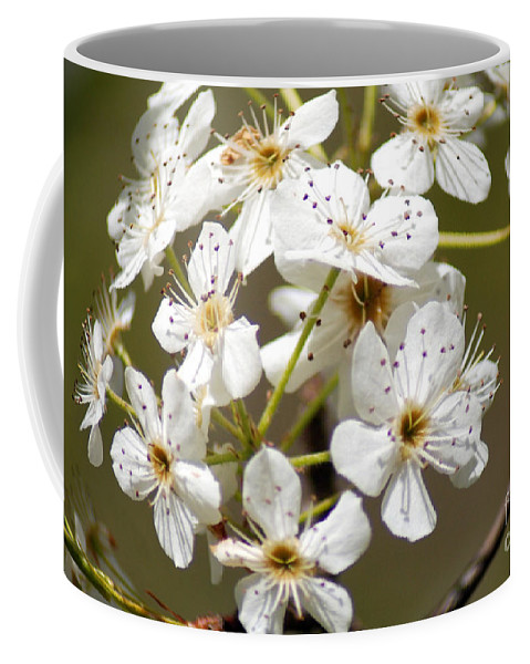 White Blossoms Coffee Mug featuring the photograph Blossoms by Optical Playground By MP Ray
