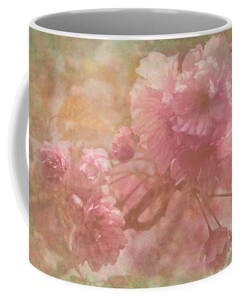 Spring Flowering Trees Coffee Mug featuring the photograph Blossoms Splender by Arlene Carmel