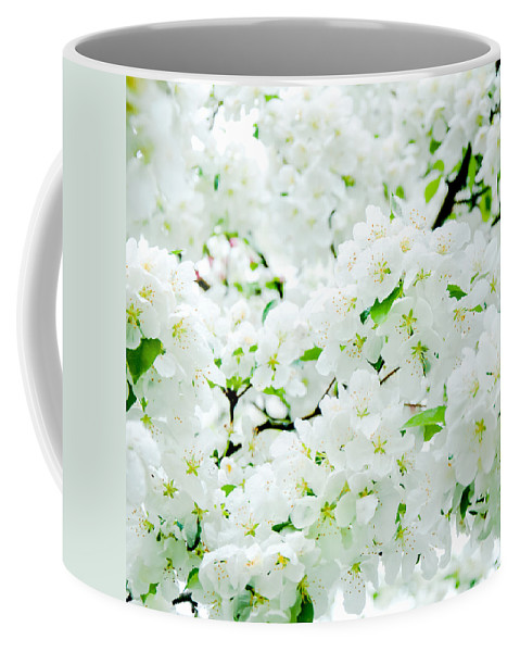 Blossoms Coffee Mug featuring the photograph Blossoms Squared by Greg Fortier