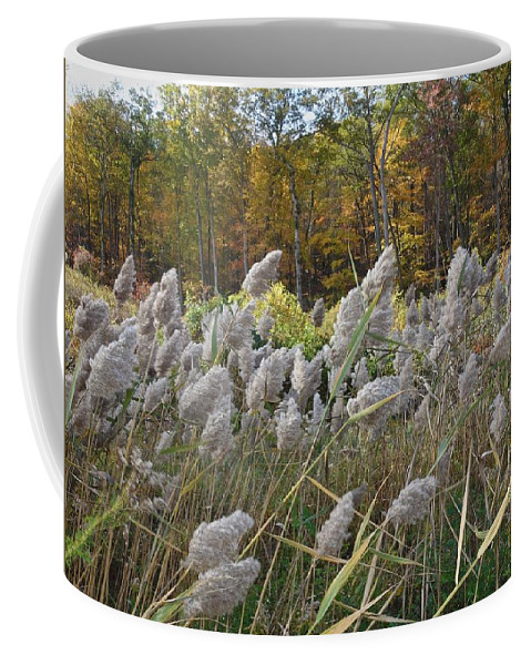Horizon Image Coffee Mug featuring the photograph Blowing In The Wind by Joan Reese
