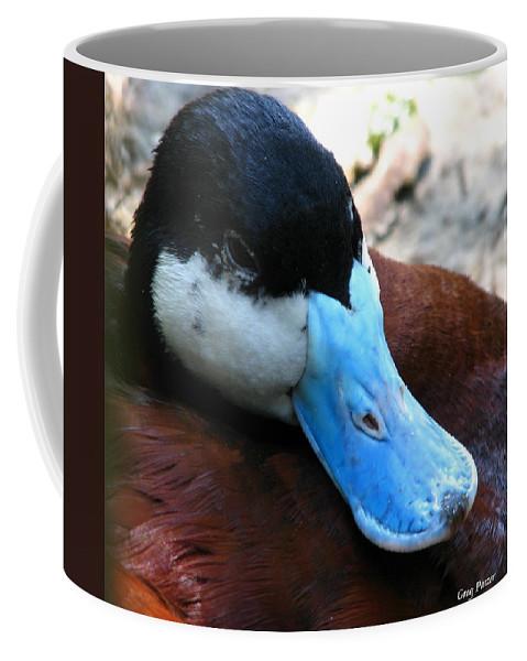 Patzer Coffee Mug featuring the photograph Blue Beak by Greg Patzer