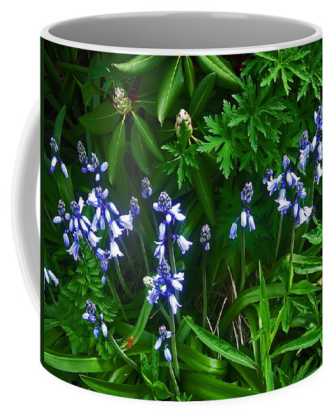 Flower Coffee Mug featuring the photograph Blue Bells by Aimee L Maher ALM GALLERY