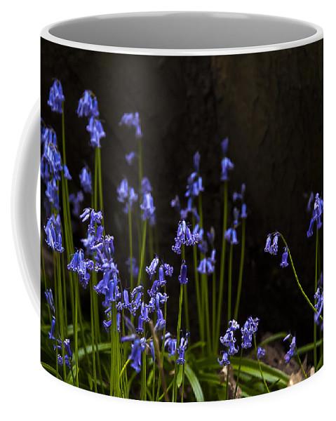Beautiful Coffee Mug featuring the photograph Blue Bells by Svetlana Sewell