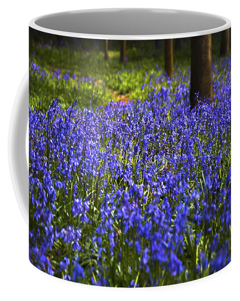 Beautiful Coffee Mug featuring the photograph Blue Blue Bells by Svetlana Sewell