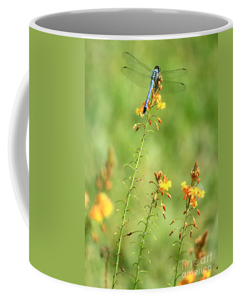 Blue And Yellow Coffee Mug featuring the photograph Blue Dragonfly In The Flower Garden by Carol Groenen