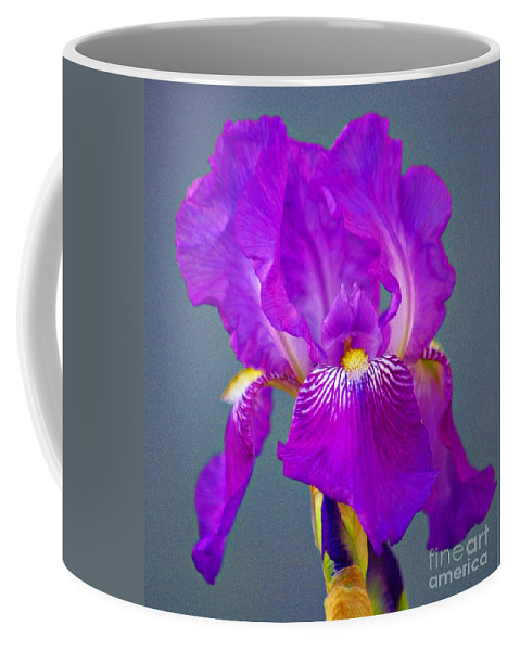 Blue Flag Coffee Mug featuring the photograph Blue Flag by Gary Richards
