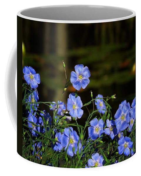 Blue Flax Coffee Mug featuring the photograph Blue Flax By The Pond by MTBobbins Photography