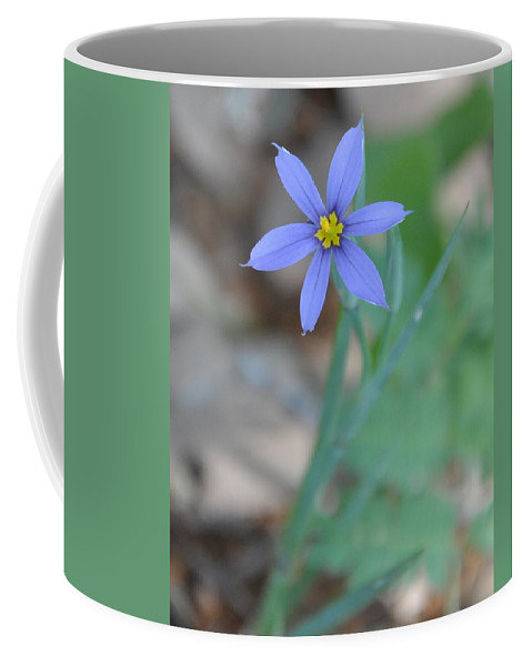Blue Coffee Mug featuring the photograph Blue Flower by Frank Madia
