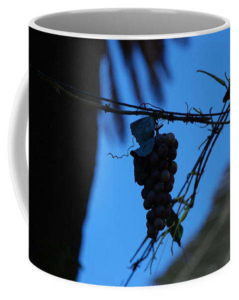 Grappes Coffee Mug featuring the photograph Blue Grapes by Dany Lison