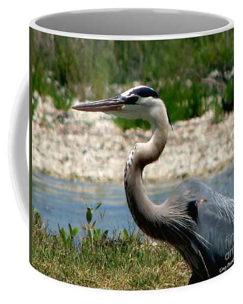 Art For The Wall...patzer Photography Coffee Mug featuring the photograph Blue Heron by Greg Patzer