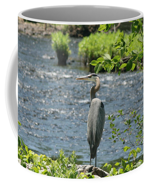 Heron Coffee Mug featuring the photograph Blue Heron River Fishing by Neal Eslinger