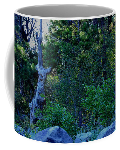 Patzer Coffee Mug featuring the photograph Blue Hour by Greg Patzer