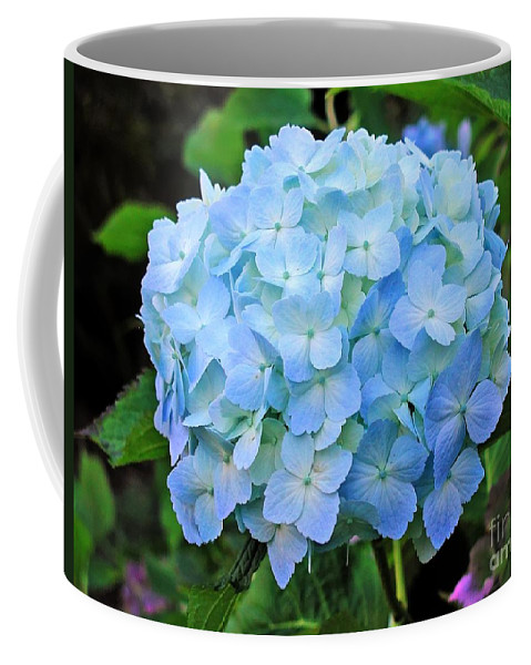 Flower Coffee Mug featuring the photograph Blue Hydrangea by Tap On Photo