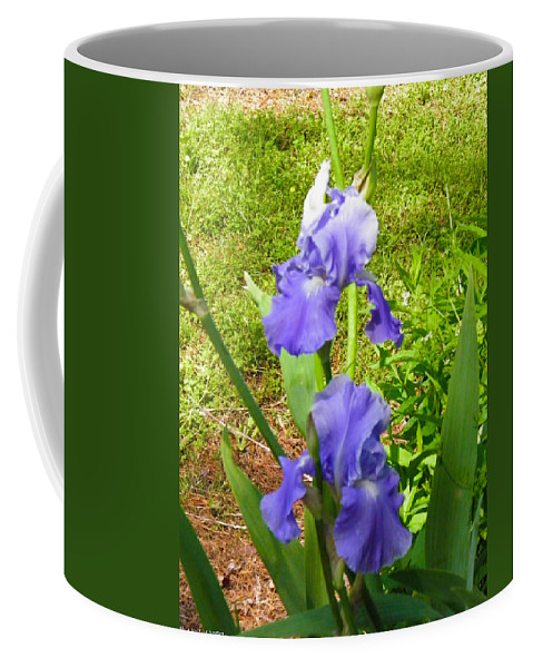 Blue Coffee Mug featuring the photograph Blue Iris by Nick Kirby
