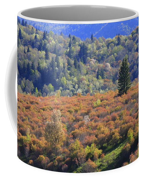 Blue Ridge Coffee Mug featuring the photograph Blue Ridge Spring by Mountains to the Sea Photo