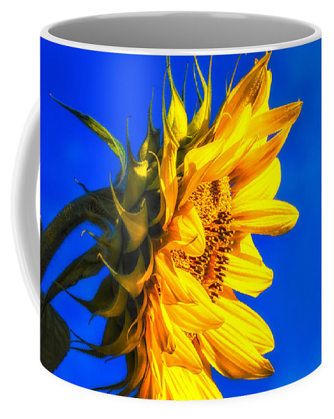Sunflower Coffee Mug featuring the photograph Blue Sky Sunshine Sunflower by Bob Orsillo