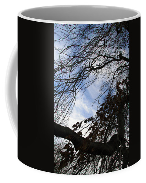 Tree Coffee Mug featuring the photograph Blue White Tree by Cora Wandel