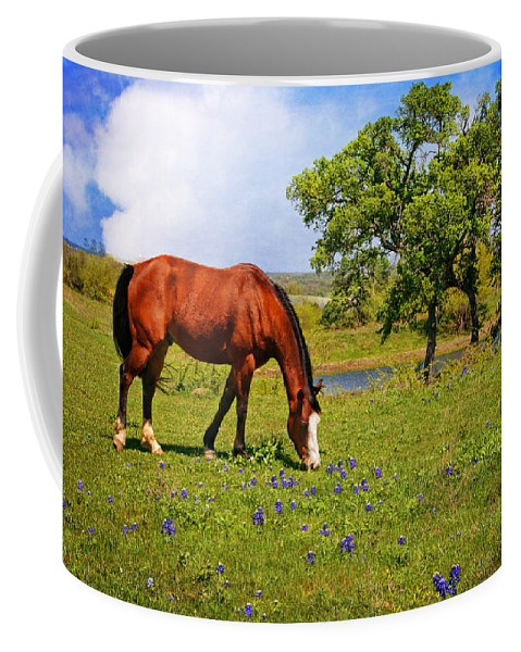 Wildflowers Coffee Mug featuring the photograph Bluebonnet Trail Delight by Lynn Bauer