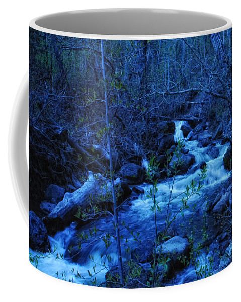 Blue Coffee Mug featuring the photograph Blues Traveler by Donna Blackhall