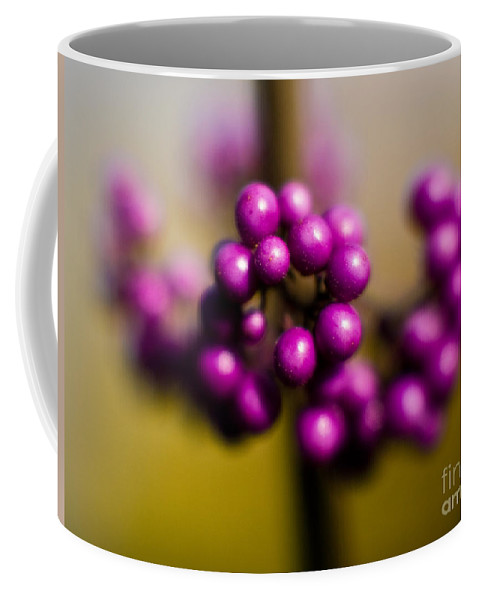 Beauty Berries Coffee Mug featuring the photograph Blur Berries by Mike Reid