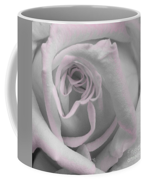Rose Coffee Mug featuring the photograph Blush Rose by Jim And Emily Bush