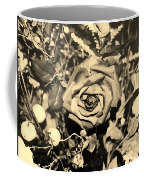 Flowers Coffee Mug featuring the photograph Boca Rose by Rob Hans
