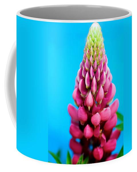 Lisa Knechtel Coffee Mug featuring the photograph Bold And Beautiful by Lisa Knechtel
