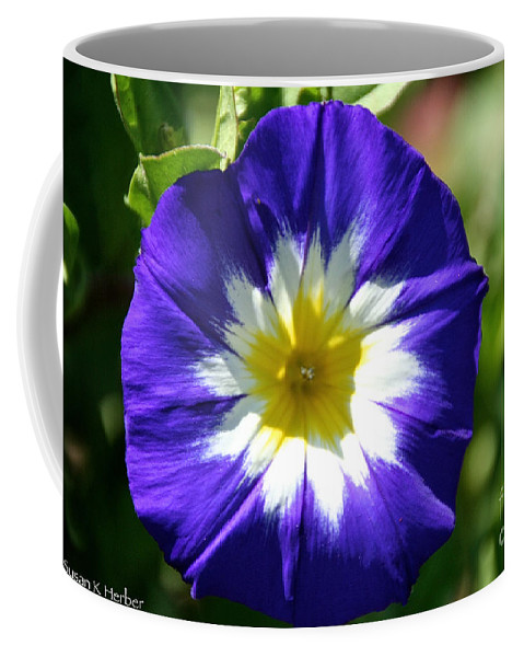 Flower Coffee Mug featuring the photograph Boldly Beautiful by Susan Herber