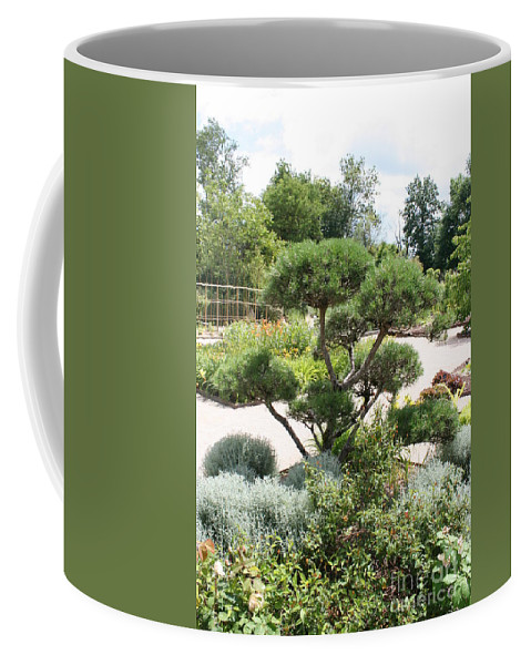 Bonsai Coffee Mug featuring the photograph Bonsai In The Park by Christiane Schulze Art And Photography