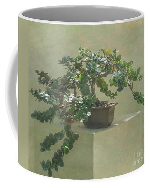 Bonsai Tree Coffee Mug For Sale By Arlene Carmel