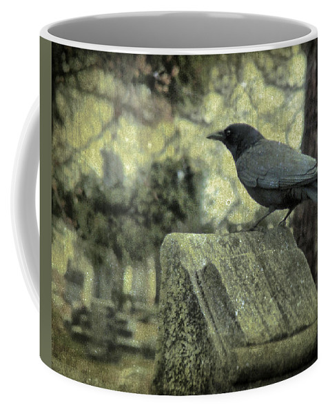 Crow Art Coffee Mug featuring the photograph Book Of Wisdom by Gothicrow Images