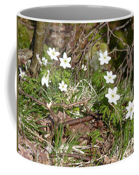 Coffee Mug featuring the photograph Born Of Snow by Katerina Naumenko