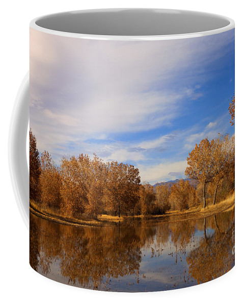 Bosque Del Apache Coffee Mug featuring the photograph Bosque Del Apache Reflections by Mike Dawson