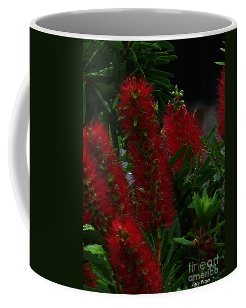 Patzer Coffee Mug featuring the photograph Bottle Brush by Greg Patzer