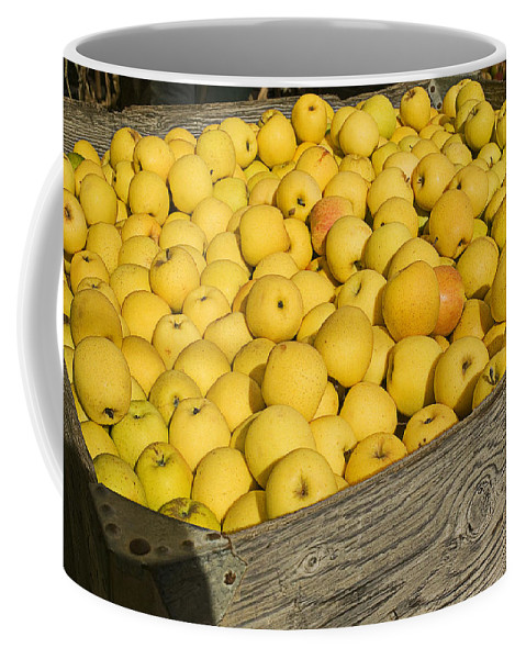 Apple Coffee Mug featuring the photograph Box Of Golden Apples by Garry Gay