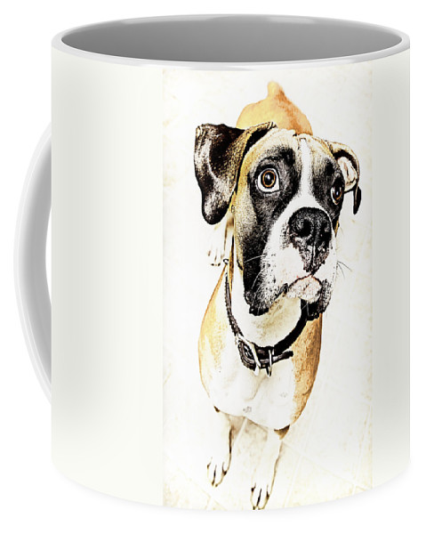 Animal Coffee Mug featuring the photograph Boxer Dog Poster by Peter v Quenter