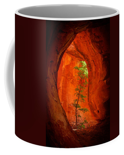 Sedona Coffee Mug featuring the photograph Boynton Canyon 04-343 by Scott McAllister