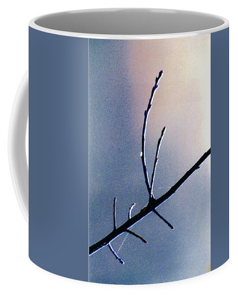 Branch Coffee Mug featuring the photograph Branch Web And Dew by Daniel Thompson