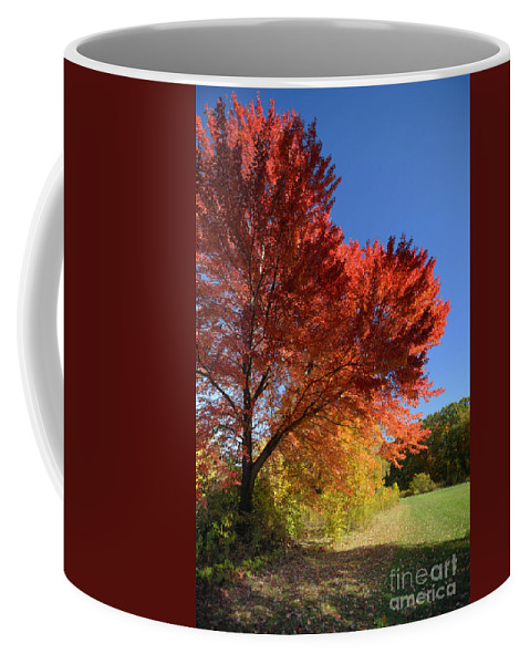Autumn Coffee Mug featuring the photograph Bright Orange Of Fall by Amy Cicconi