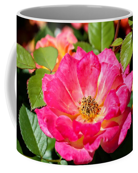 Bright Pink Rose Coffee Mug featuring the photograph Bright Pink Rose by Cynthia Woods