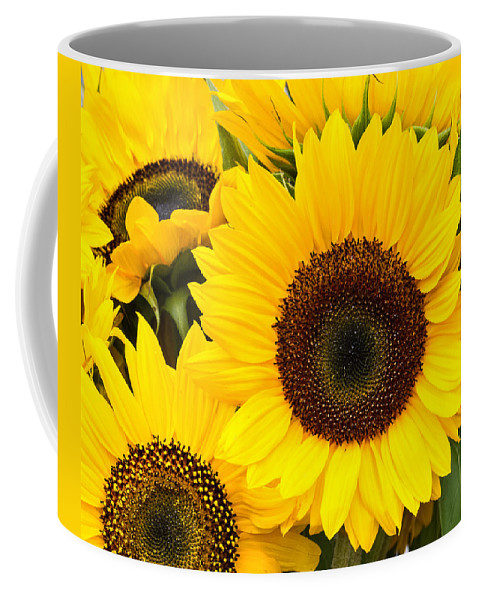 Agriculture Coffee Mug featuring the photograph Bright Sunflower Blossoms by John Trax