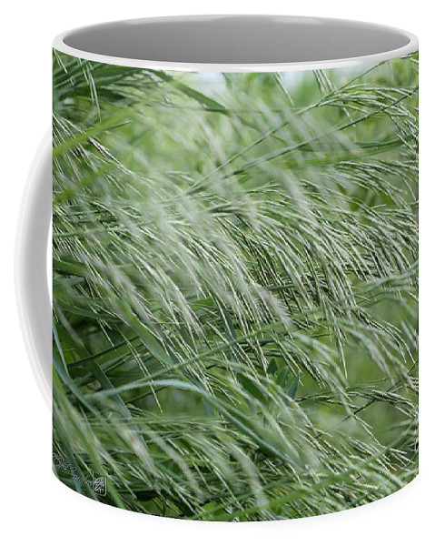 Mccombie Coffee Mug featuring the photograph Brome Grass In The Hay Field by J McCombie