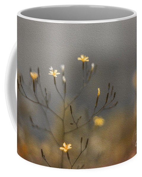 Clare Stokes Coffee Mug featuring the photograph Bronze Beauty by Clare Bambers
