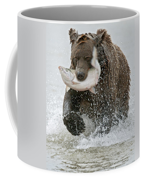 Wild Coffee Mug featuring the photograph Brown Bear With Salmon Catch by Gary Langley