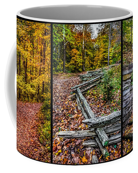 Path Coffee Mug featuring the photograph Brown County Park by Ron Pate