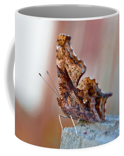 Brown Coffee Mug featuring the photograph Brown Paper Moth by Scott Hervieux